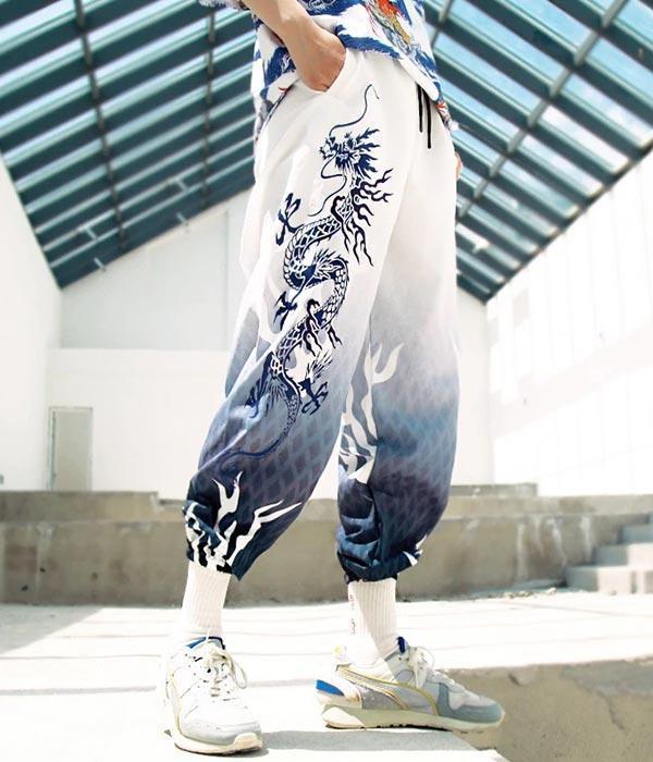 Dragon Pants Progressive Design