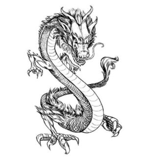 Dragon Ephemeral Tattoo Chinese Art