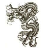 Dragon Ephemeral Tattoo Japanese Art